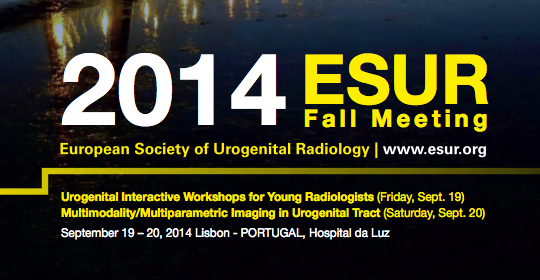 ESUR Fall Meeting 2014