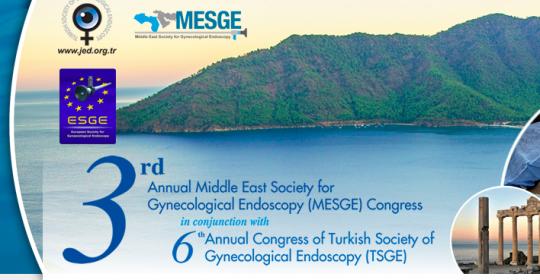 MESGE – 3º Annual Congress 8-12 Abril